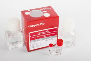 diagenode-c01020010-kit