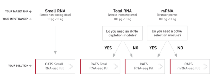 rna-seq-library-prep-kit-workflow